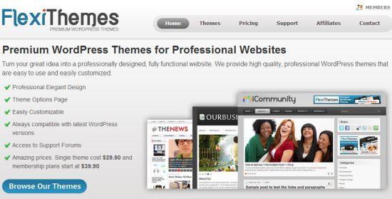 Premium WordPress Themes