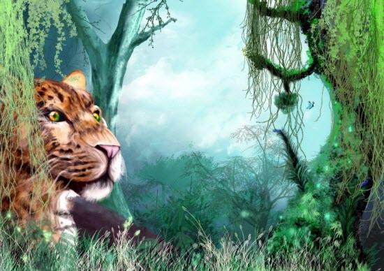 Animal Artwork
