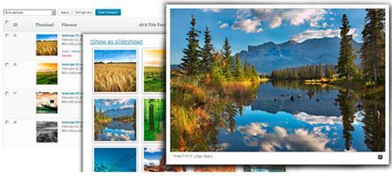 NextGEN Gallery - Photo Gallery Plugin
