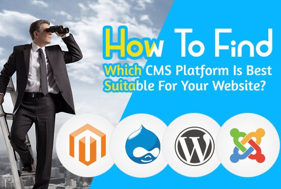 How To Find Which CMS Platform Is Best Suitable For Your Website?