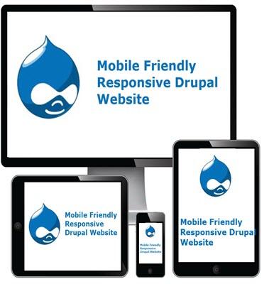 Responsive Drupal Website