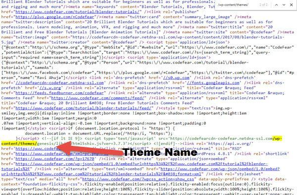 WordPress Theme Name
